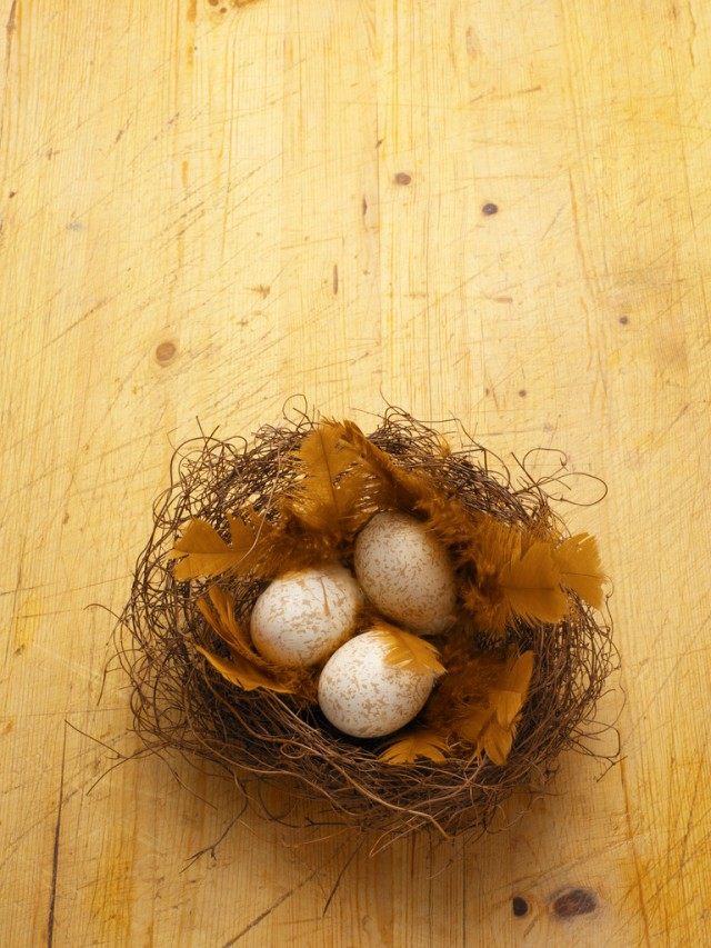 Three eggs in nest