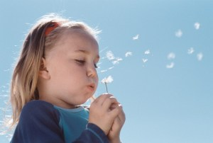 Girl Blowing on a Dandelion --- Image by © Royalty-Free/Corbis